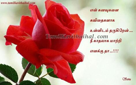 flowers kadhal romance feel tamil kavithai kanavu thanimai wallpaper