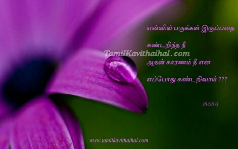 Friendship And Love Quotes In Tamil - Valentine Day