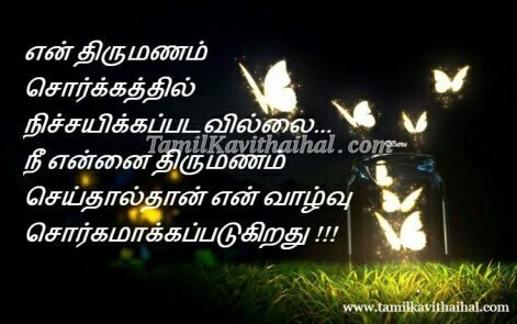 sorgam butterfly marriage nikkah sana tamil kavithai husband and wife ...
