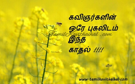 Love kavithaigal tamil kavithai quotes latest kavithaigal meera HD wallpaper images download