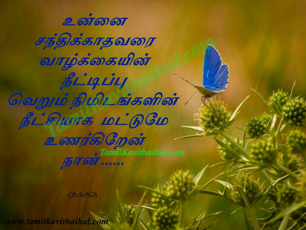 Sad Love Songs - Download Tamil Songs