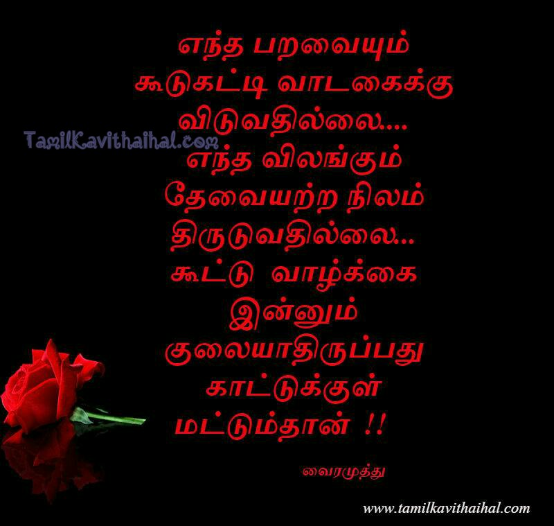 Tamil Kathaigal