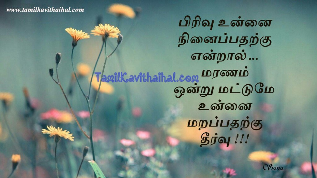 Very Sad Love Quotes Images In Tamil : very sad love quotes images in tamil - Valentine Day