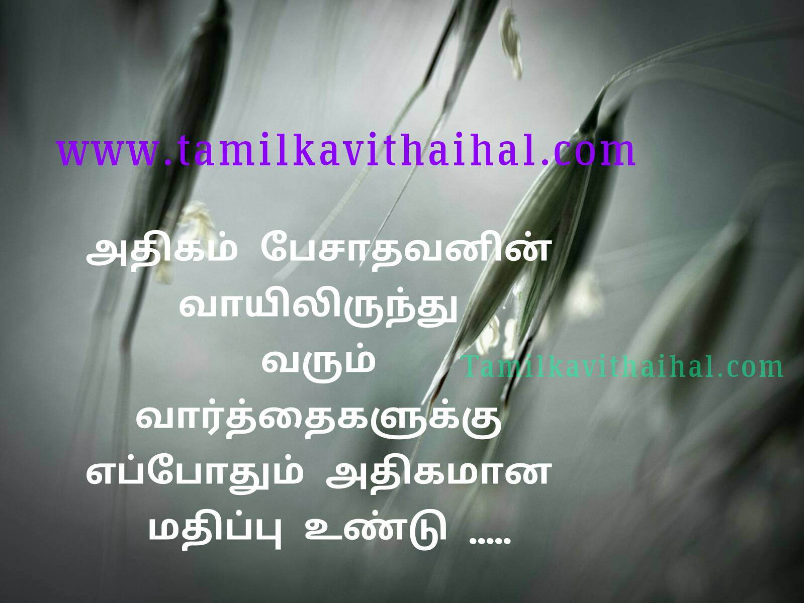 Beutiful tamil quotes for motivation anbu feeling uravukal