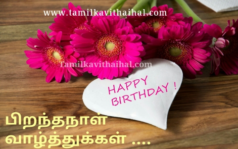 beautiful pirantha naal valthukkal quotes in tamil word happy birthday wishes sweet heart greeting and blessing message hd wallpaper