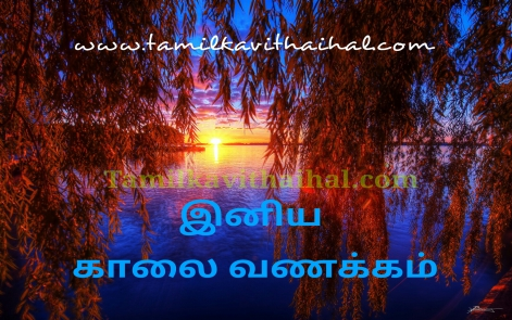 beautiful gud mrng status good morning quotes in tamil whatsapp dp wallpaper download