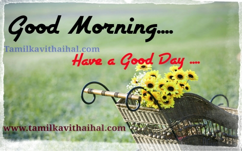 best good morning quotes in tamil word kalai vanakkam dp whatsapp hd image download