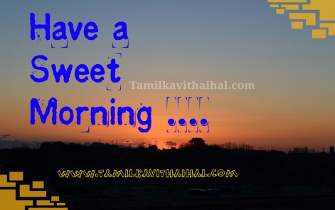 fresh gud mrg wishes good morning status whatsapp dp hd wallpaper download