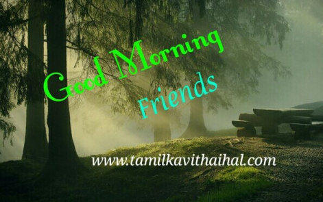 gud mrng wishes in tamil word whatsapp facebook dp upload photo picture image download