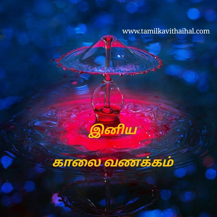 kalai vanakkam whatsapp images download