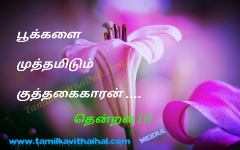 best tamil haikoo kavithai about kaatru thendral pookal flower meera poem whatsapp images download