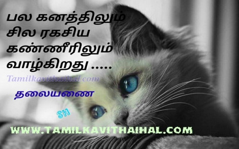 hikoo kavithai in tamil about feel kanner pain
