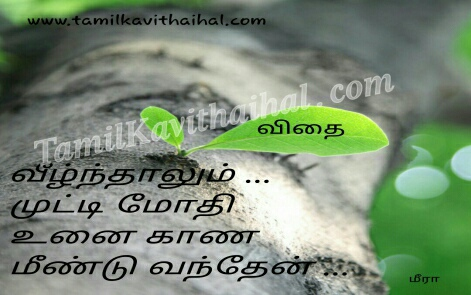 iyarkkai kavithai in tamil language positive quotes life meera poems facebook images download