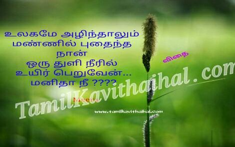tamil iyarkai kavithai nature vithai maram
