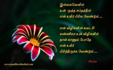 tamil kadhal kavithai meera husband and wife kavithaigal sentiment last wish aasai viruppam love proposal 6