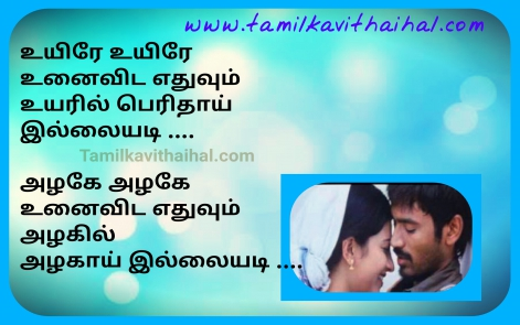 beautiful tamil love songs in tamil movie thanush three film romantic girl proposal poem whatsapp status dp images
