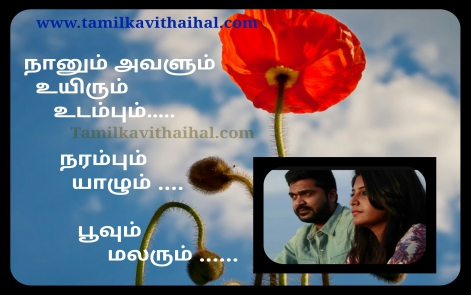 very beautiful love friendship simbu movie aym naanum avalum cute kadhal song quotes hd tamil wallpapper