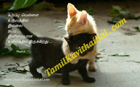 Natpu Friendship Tamil Kavithai Quotes Cat Niram