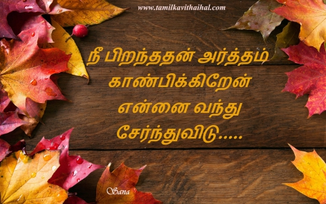 birthday kavithai piranthanaal valthukkal kadhal vazthu artham poem love quotes tamil facebook images