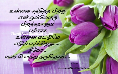 piranthanaal kavithai love santhippu boy feel birthday wishes purple tulips flowers tamil images sana download