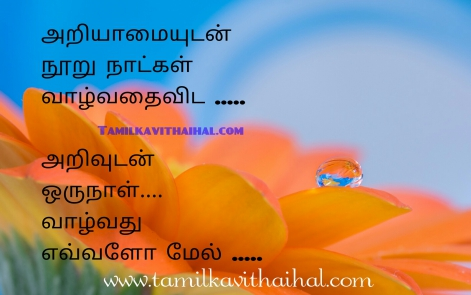awesome tamil quotes with picture about feelinf love heart touching w kavithai whatsapp dp images