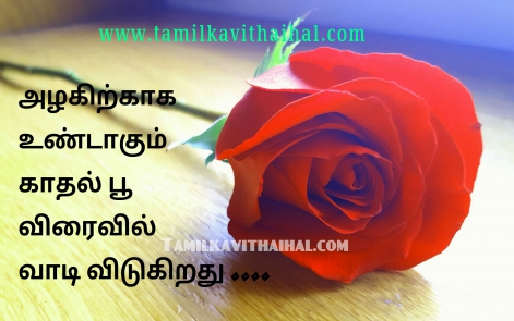 It Tamil Latest Tamil Quotes And Best Kavithaigal Page 148