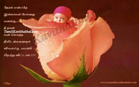 Cute Baby Rose Time Tamil Kavithai Thaimai