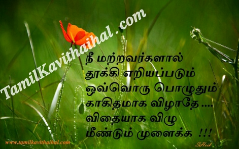 vidhayga vilu thooki eriayapadum podu motivational quotes valkai thathuvam inspirational