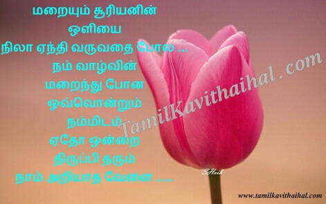 wallpappers with motivational quotes inspirational  quotes on life and love in tamil suryan nila thirupi tharum