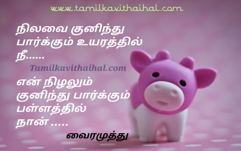 vairamuthu kadhal kavithai in tamil love soham failure quotes