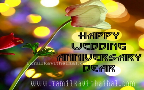 beautiful rose wedding day anniversary wishes in tamil word thirumana naal valthukkal kavithaigal image download