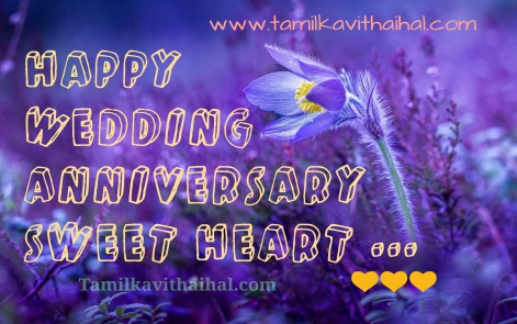 wonderful couple wedding anniversary wishes in tamil thirumanam valthukkal kavithai image pictures download