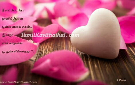 Beautifull Heart Rose Petals Smile Love Tamil_kavithai