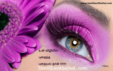 Butterfly Purple Eye Wallpaper Tamil Kavithai Vili Kadhal