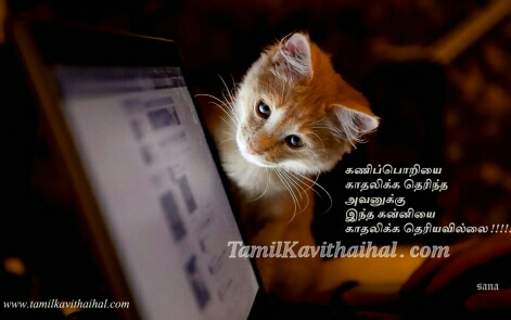 Cat Screen Love Tamil Kadhal Kavithai Sad Feel