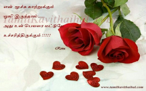 Rose Wallpaper Swasam Heart Girl Feel Tamil Kavithai
