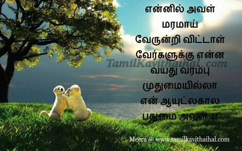 alagu kavithai cute love forever images tamil kadhal boy feel happy proposal sana facebook download