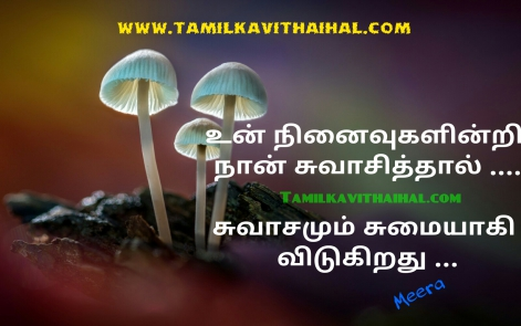 awesome kadhal feel kavithai un ninaivindri swasam sumai vali pirivu meera kadhal poem whatsapp wallpaper download