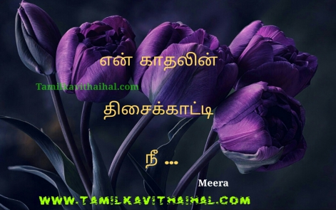 awesome kadhal feel quotes in tamil en kadhal thisai katti nee meera love poem whatsapp dp hd image
