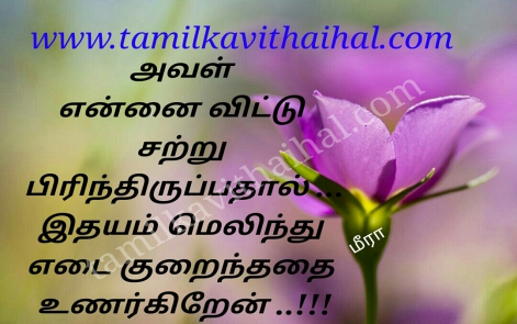 awesome kadhal kavithai idhyam melinthu flower love meera poem hd images dp whatsapp pic