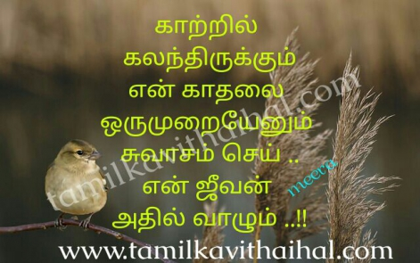 awesome kadhal meera poem love quotes kaatru suvasam en jeevan vaalum kavithai facebook image download