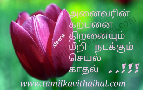 awesome tamil kadhal quotes karpanai love meera poem dream flower dp status pic