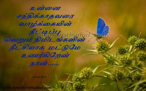 beautiful butterflies tamil kadhal kavithaigal valkai nimidam nodikal unnai santhikathavarai neram sana kavithai images download