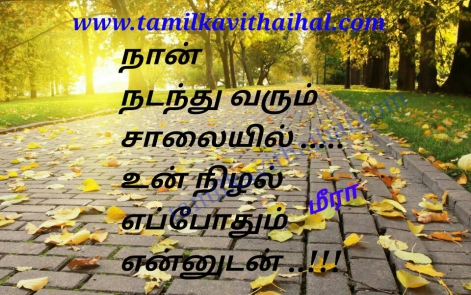 beautiful love feel kavithai boy love proposal im follow your shadow meera kadhal poem whatsapp tamil dp