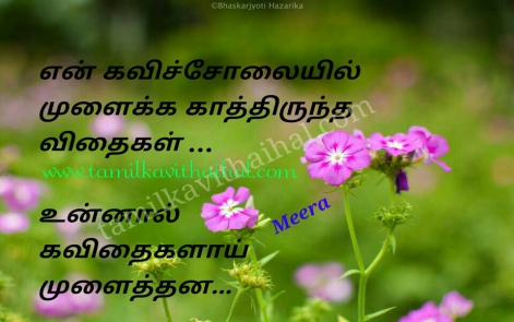 beautiful love kavithai tamil kavi solai vidhai kadhal hd wallpapper meera poem facebook status pic