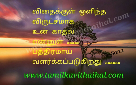 beautiful love kavithai tamil vidhai maram hidden kadhal sana one side poem facebook image download