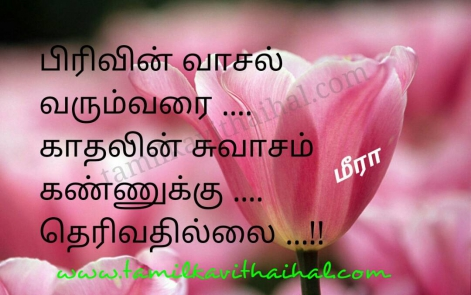 beautiful love proposal one side kavithai tamil language pirivu vasal kadhal swasam meera poem wallpaper