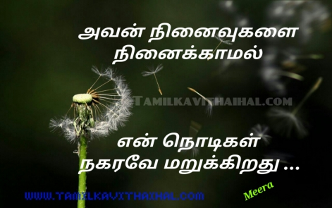 beautiful love quotes for girl kadhal feel avan ninaivukal ninaikamal nodikal nakaradhu meera poem facebook image download whatsapp status