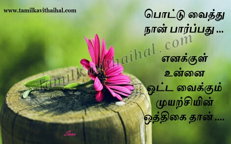 beautiful pink flower pottu kavithai girl romance feel tamil sana poem whatsapp images