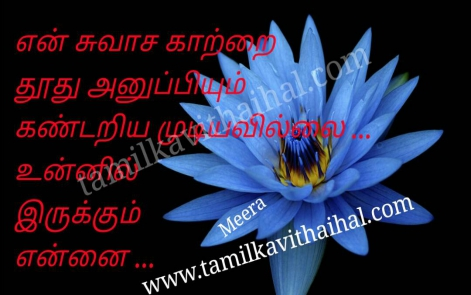 beautiful quotes for kadhal propose kavithai moochu kaatru thhothu suvasam my breath meera poem pic